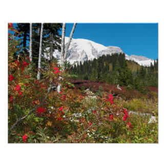 Mount Rainier Autumn Splendor Poster