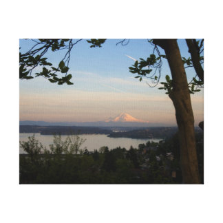Mount Rainier Vista Canvas Print