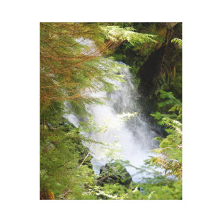 Mount Rainier Waterfall Canvas Print