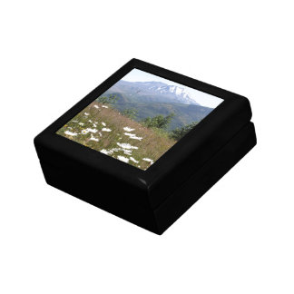 Mount St. Helens Gift Box