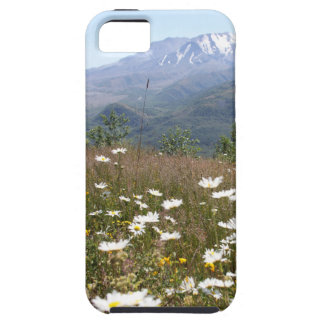 Mount St. Helens iPhone 5 Cases