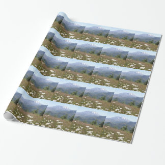 Mount St. Helens Wrapping Paper