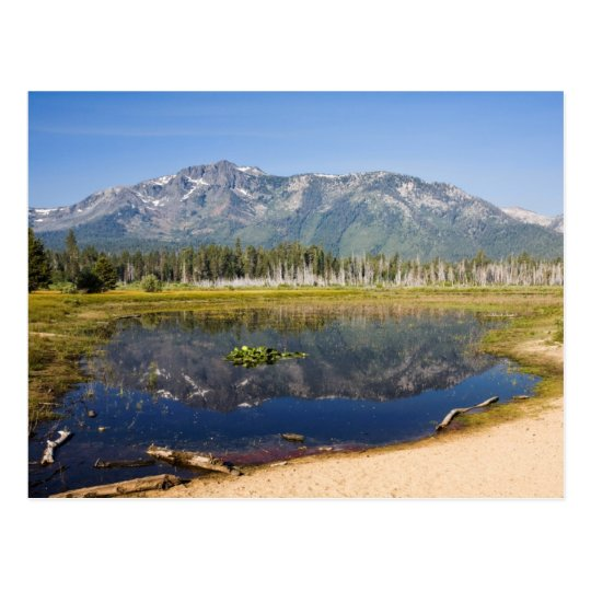 Mount Tallac Reflection Postcard