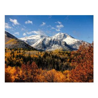 Mount Timpanogos in Autumn Utah Mountains Postcard