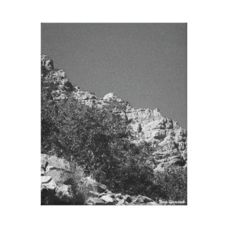 Mount Whitney Trail View #13 Canvas Print