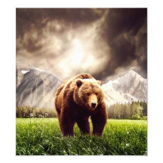 Mountain Bear Photo Print