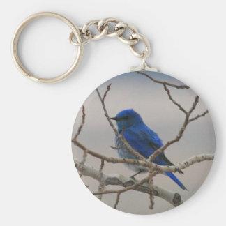 Mountain Blue Bird Keychain