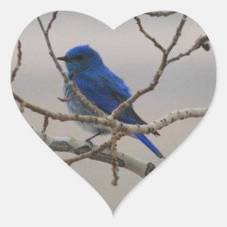 Mountain Bluebird Heart Sticker