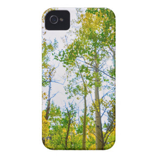Mountain Breeze iPhone 4 Covers