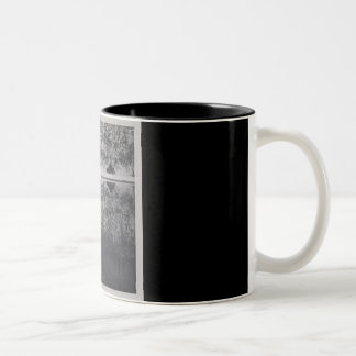 Mountain cabin Two-Tone coffee mug