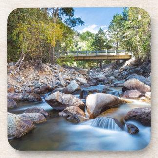 Mountain Creek Bridge Coasters