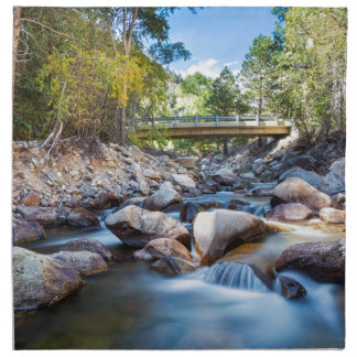 Mountain Creek Bridge Napkin