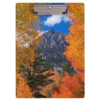 Mountain framed in fall foliage, CA Clipboard