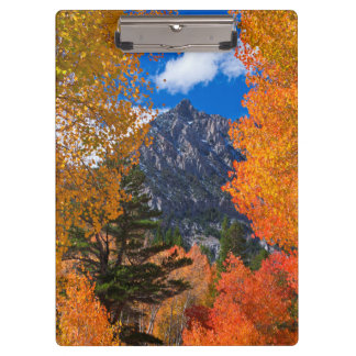 Mountain framed in fall foliage, CA Clipboards