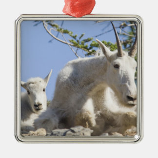 Mountain goat nanny with kid in Glacier National Metal Ornament