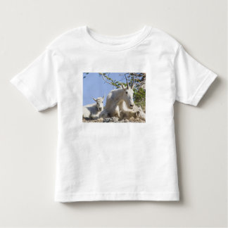Mountain goat nanny with kid in Glacier National Shirts