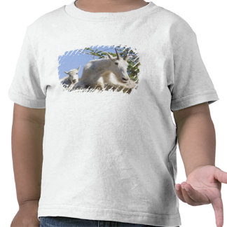 Mountain goat nanny with kid in Glacier National Tshirt