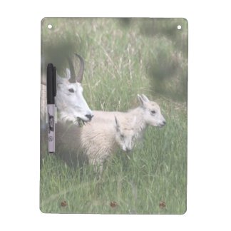 Mountain Goat Twins Dry Erase Boards