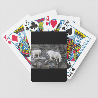 mountain goat with baby bicycle playing cards