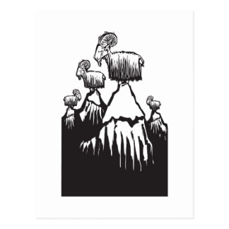 Mountain Goats Postcard