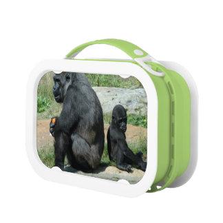 Mountain Gorillas Lunch Box