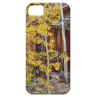 Mountain Hideaway iPhone 5 Cover