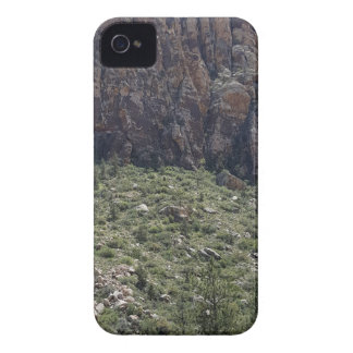 Mountain in Red Rock NV iPhone 4 Case-Mate Cases