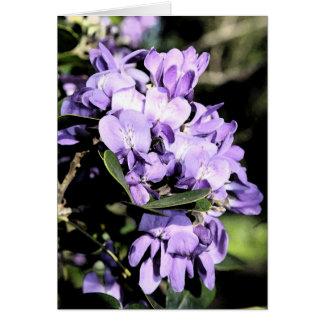 Mountain Laurel Bloom Card