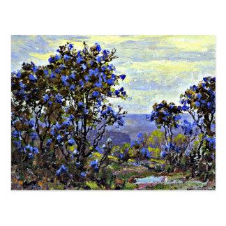 Mountain Laurel in Bloom, fine art painting Postcard