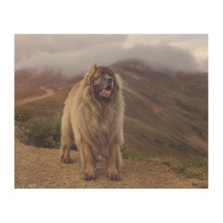 mountain Leonberger Wood Prints