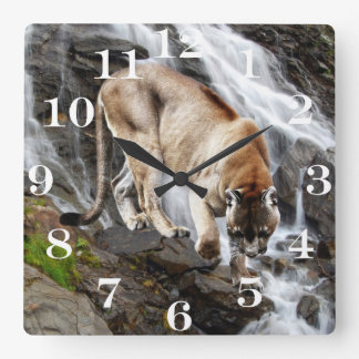 Mountain lion at the waterfall square wall clock