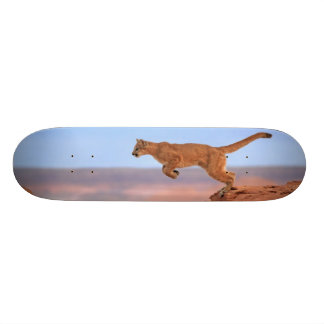 Mountain Lion Skate Board Deck