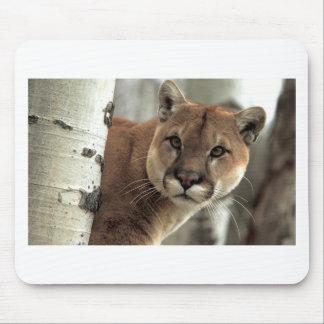 Mountain Lion Striking a Pose Mouse Pad