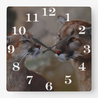 Mountain lions in love square wall clock