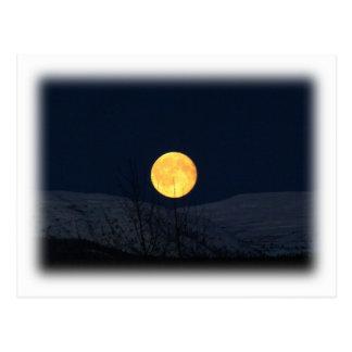 Mountain Moon Postcard