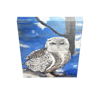 Mountain owl. canvas print
