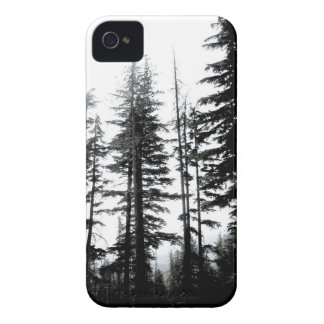 mountain pines iPhone4 case black and white photo iPhone 4 Cases