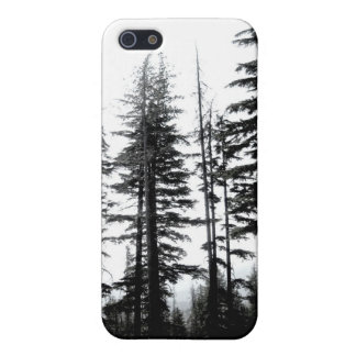 mountain pines original black and white photo art iPhone 5 cover