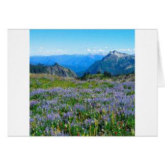 Mountain Purple Heather Haze Greeting Cards