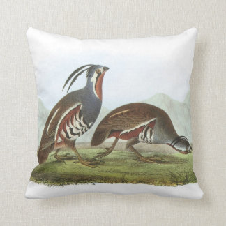 Mountain Quail by Audubon Throw Pillow