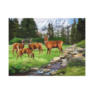 Mountain Red Deer Safari Canvas Print