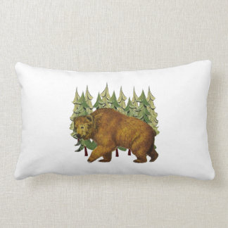 MOUNTAIN ROAM LUMBAR PILLOW