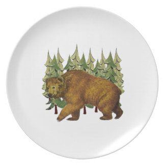 MOUNTAIN ROAM PARTY PLATES