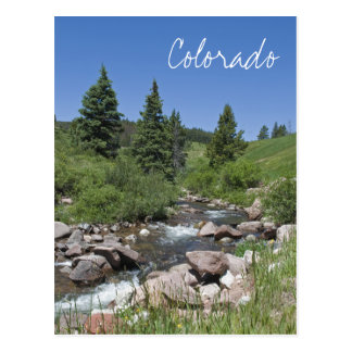 Mountain Stream Colorado Postcard