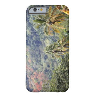 Mountain view, Dominican Republic. Barely There iPhone 6 Case