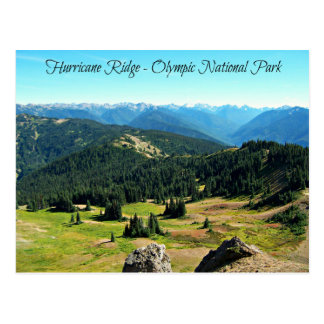 Mountain Vista of Hurricane Ridge Postcard