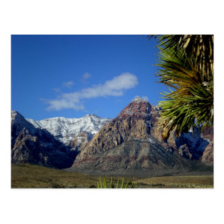 Mountains and Canyon View with Snow Postcard