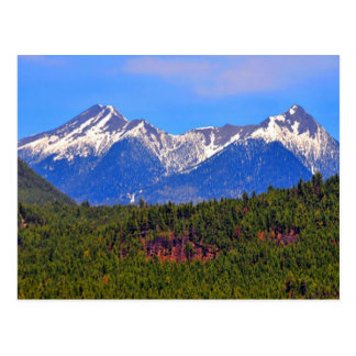 Mountains Flagstaff Arizona Postcard