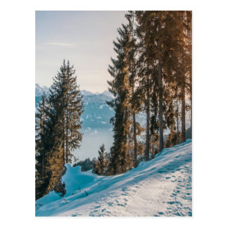 mountains trees and snow postcard