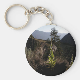 Mountainside Mullen Basic Round Button Keychain